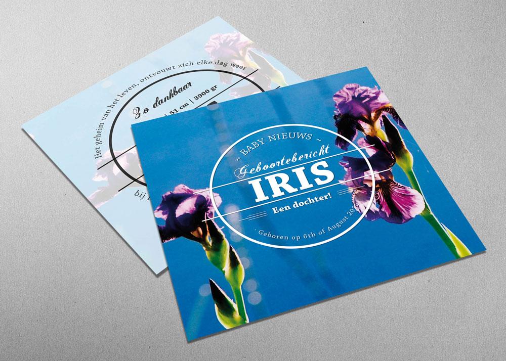 Iris - blauw - paars - geboortekaartje - meisje - logo